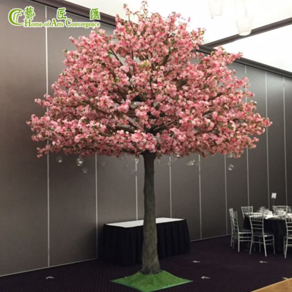 large pink sakura tree