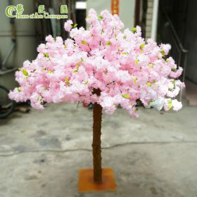 5ft pink cherry tree