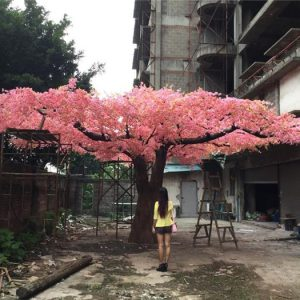 giant pink blossom tree