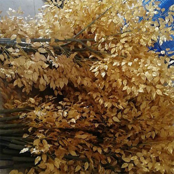 silk golden ficus branch