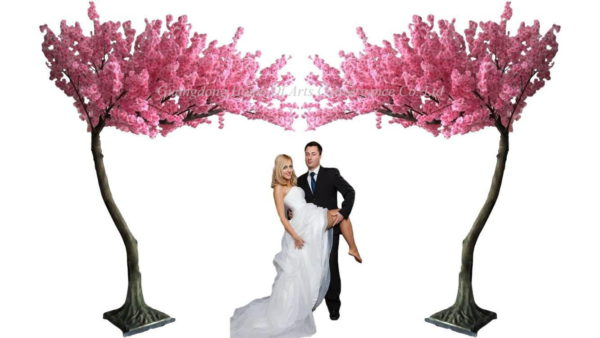 Cherry trees for wedding arch