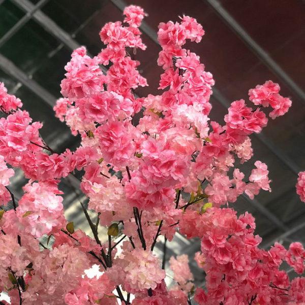 multi-color silk cherry blossoms