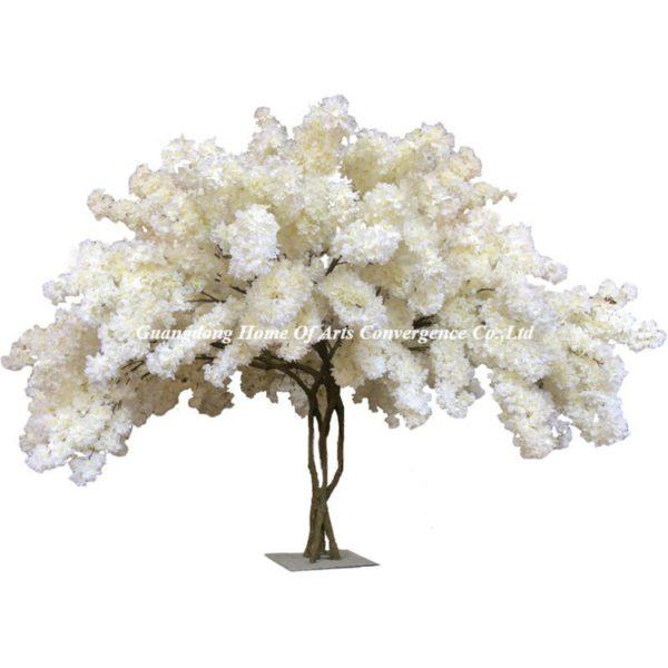 warm white cherry trees