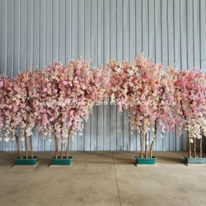 wooden trunk cherry trees