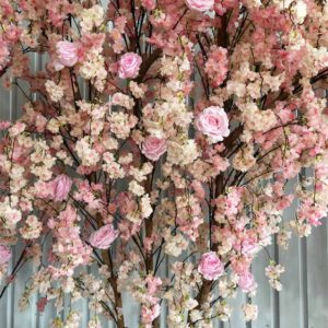 cherry blossom tree for weddings